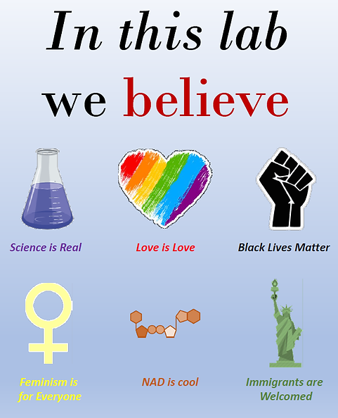 In this Lab we believe.png