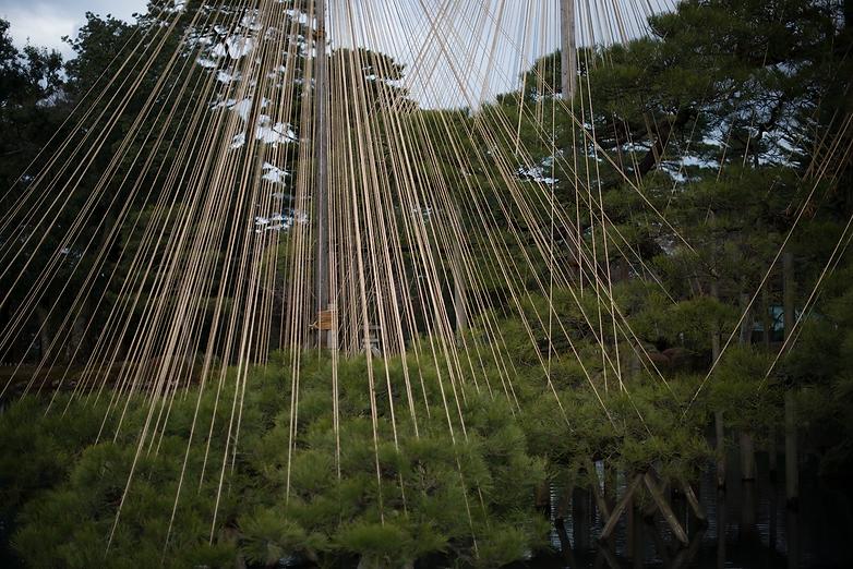 石川県, 金沢市, 加賀, 北陸, カメラマン, フォトグラファー, 写真家, 撮影, 風景, 宮﨑誠