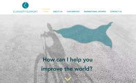 Website for NGO support in USA