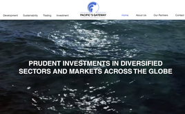 Website for Trading, Development and Investment firm in Palau