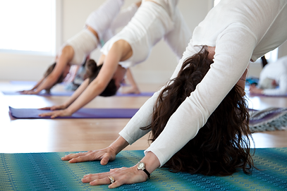 Yoga Classes at High Mountain Hall