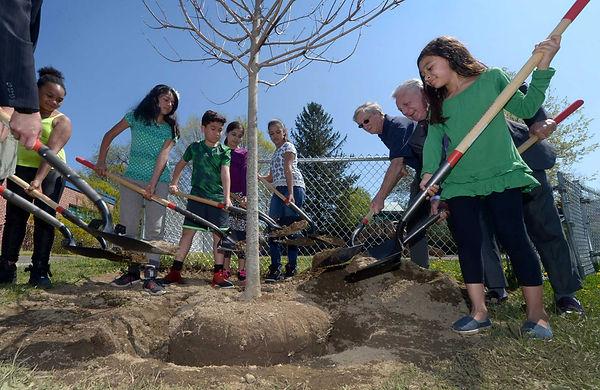 Arbor Day, Norwalk, CT