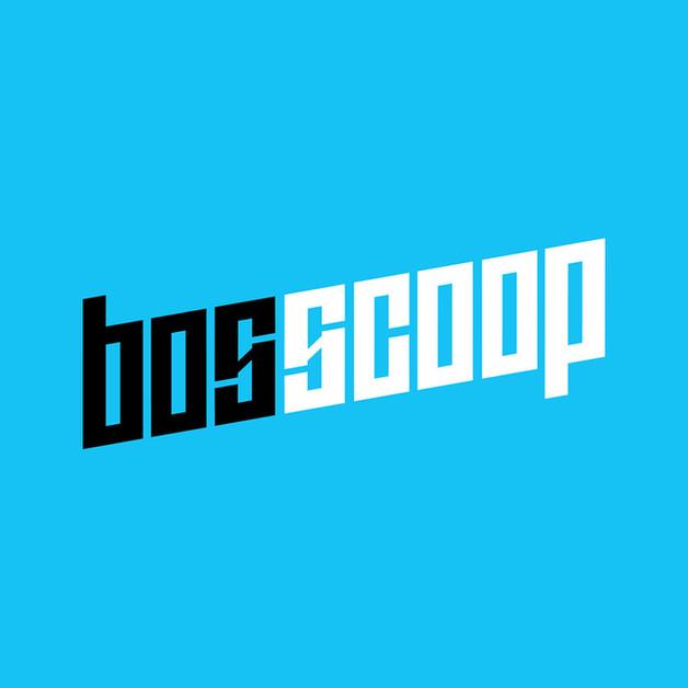 Bosscoop - logo