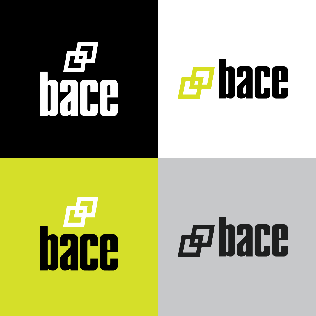 Bace_Image3.png