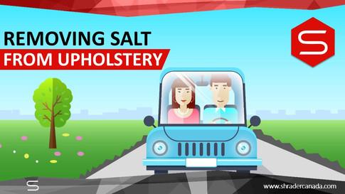 Removing Salt from upholstery