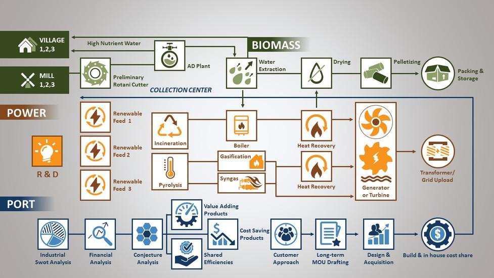 BioMass Energy Diagram Infographic