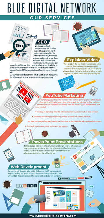 Blue Digital Network Our Services Infographic