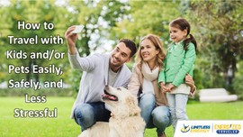 How to Travel with Kids and Pets Easily, Safely, and Less Stressful presentation