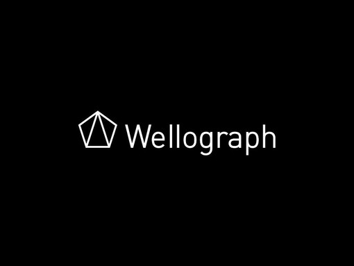 Wellograph Product Crowdfunding Playbook