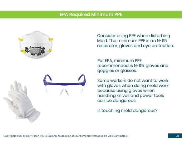 Mold Health & Safety (20).jpg