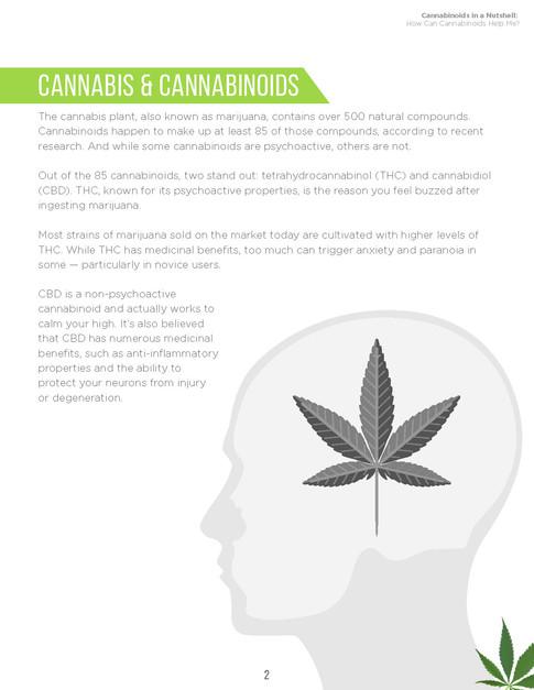 Cannabinoids in A Nutshell (4).jpg