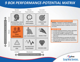 9 Box Performance-Potential Matrix_Page_09