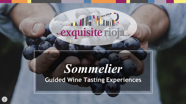 Guided Wine Tasting Experiences