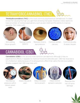 Cannabinoids in A Nutshell (7).jpg