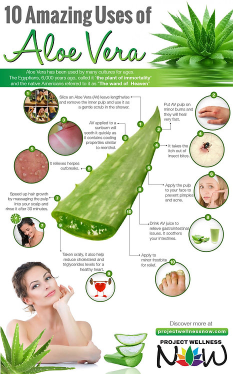 10 Amazing used of Aloe Vera Infographic