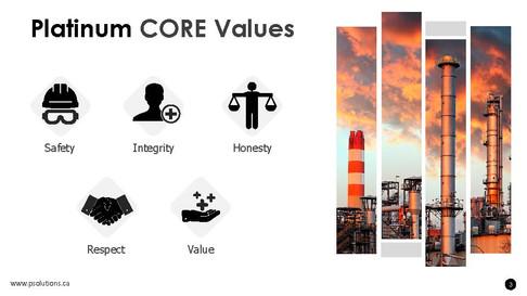 Platinum core values