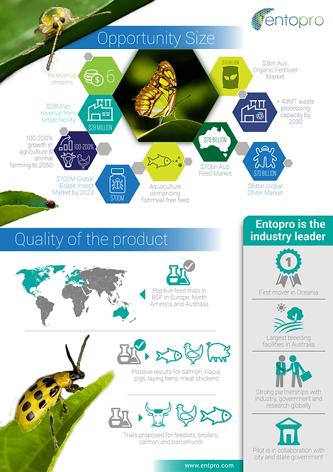 Entopro is the industry leader Infographic