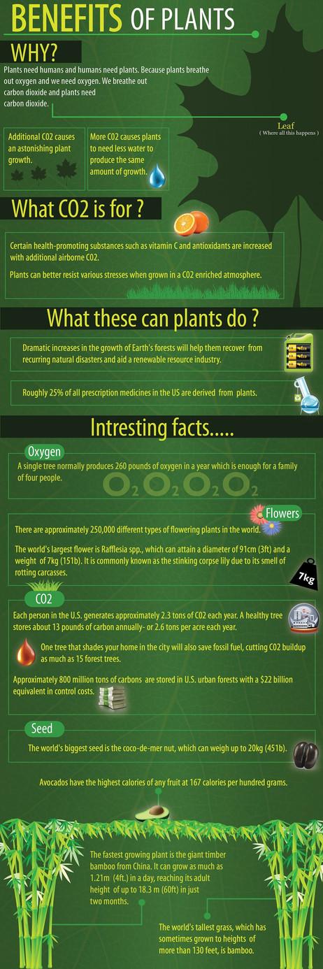Benefits of Plants
