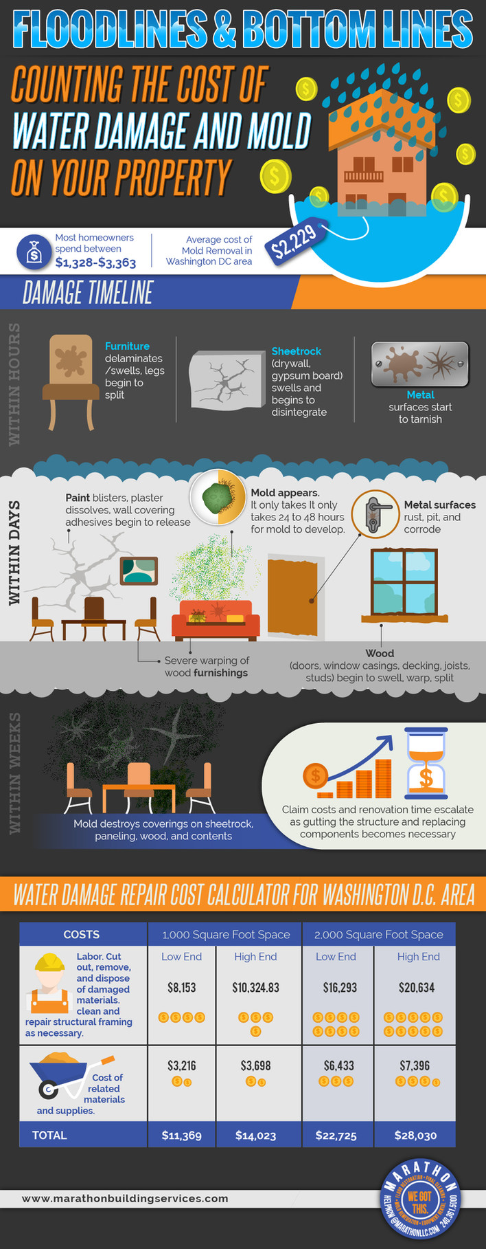 Flood Lines & Bottom Lines Counting the Cost of Water Damage and Mold On Your Property