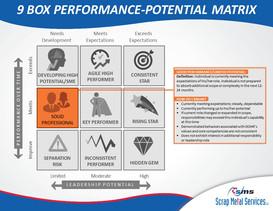 9 Box Performance-Potential Matrix (9).J