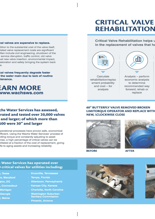 Wachs Water Services Brochure