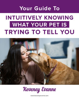 Your Guide to Intutively Knowning What your Pet is Trying to Tell You