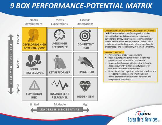 9 Box Performance-Potential Matrix (8).J