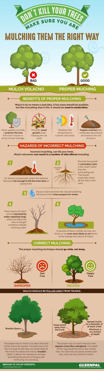 Don't Kill Your Trees