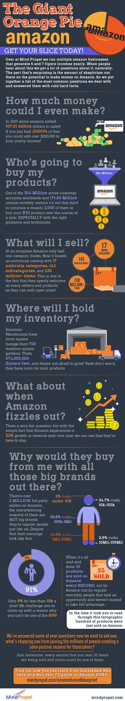 The Giant Orange Pie Amazon