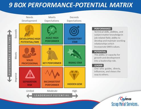9 Box Performance-Potential Matrix