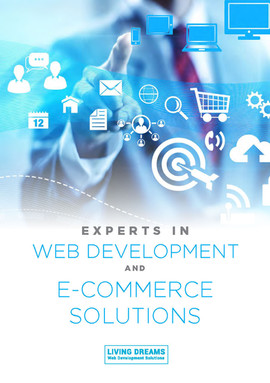 Experts in Web Development and E-Commerce Solutions