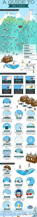 A Guide to Ski Lingo Infographic