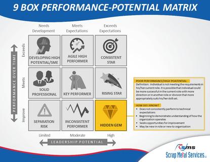 9 Box Performance-Potential Matrix (4).J