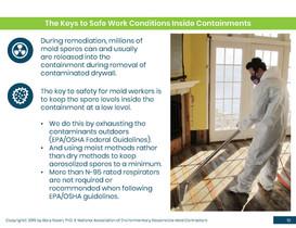 Mold Health & Safety (10).jpg