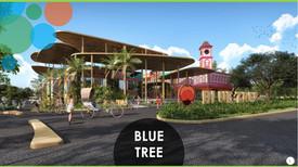 Blue Tree Presentation