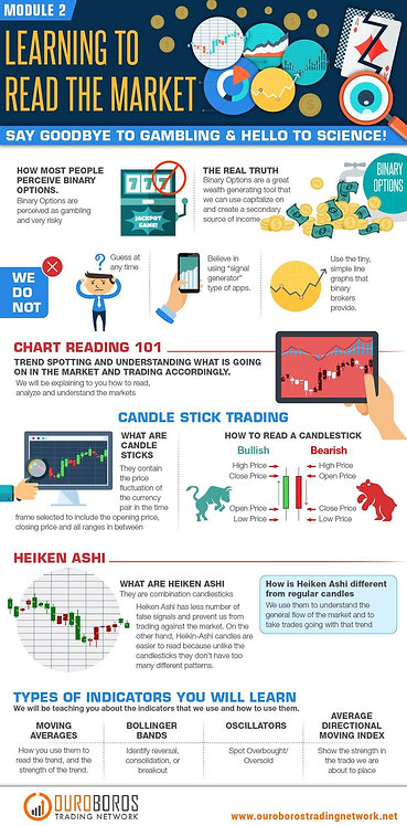 Learning to Read the Market Infographic