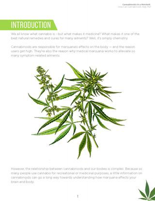 Cannabinoids in A Nutshell (3).jpg