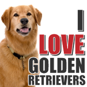 I Love Golden Retrievers