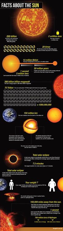 Facts About the Sun Infographic