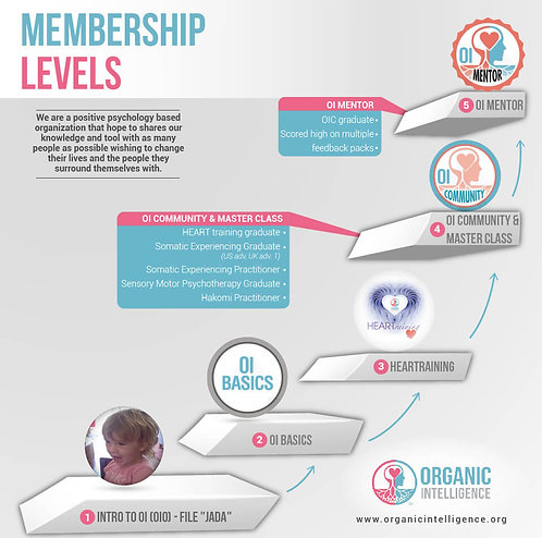 Membership Levels Infographic