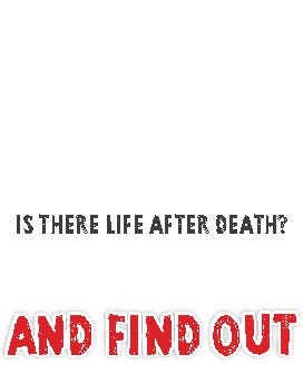 Is There Life After Death_Page_3.jpg
