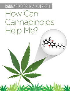 Cannabinoids in A Nutshell