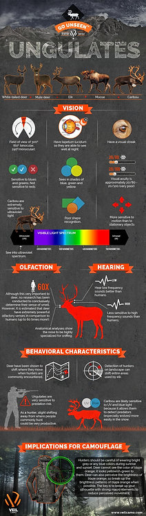 Hunting Ungulates (White-Tailed Deer, Mule Deer, Elk, Moose, Caribou) Infographi