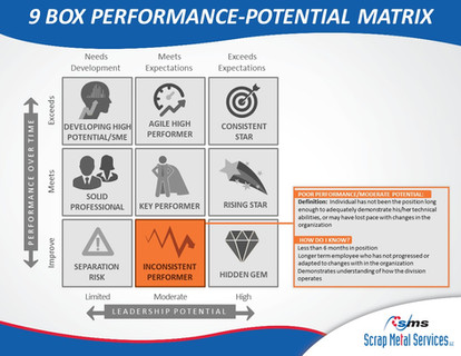 9 Box Performance-Potential Matrix (7).J