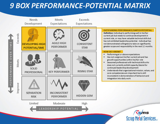 9 Box Performance-Potential Matrix_Page_08
