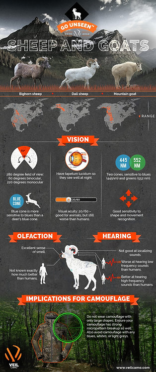 Sheep and Goats (Bighorn Sheep, Dall sheep, Mountain Goat) Infographic
