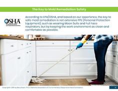 Mold Health & Safety (14).jpg