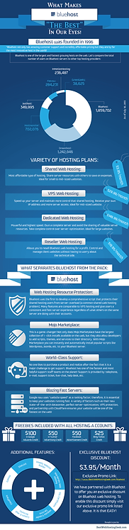 What Makes Bluehost Infographic