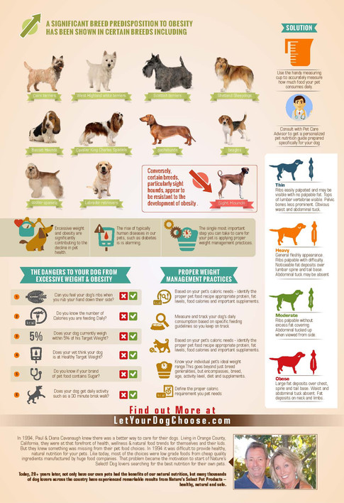 Obesity & Overweight in Dogs_Page (2).