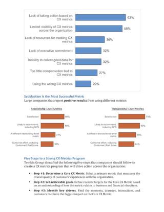 Mastering Customer Experience Metrics (2)